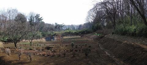 minamiyama11_110306s.jpg