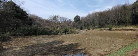 minamiyama4_110306s.jpg