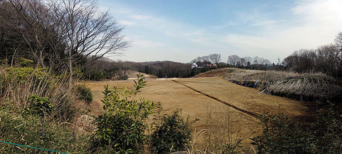 negatayato-top110306s.jpg